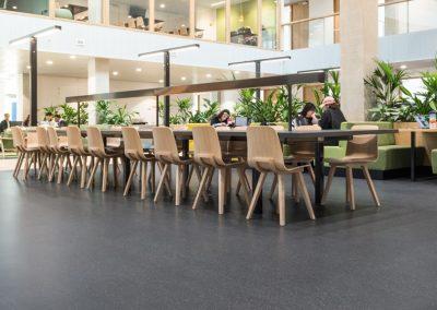 Rotterdam Tudományi Egyetem - Noraplan Unita